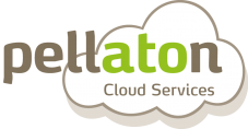 Pellaton Cloud Services Logo